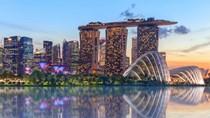 Kim ngạch NK nguyên phụ liệu dệt, may, da, giầy từ Singapore có mức tăng trường mạnh