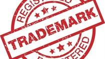 Cách tra cứu nhãn hiệu trong quy trình đăng ký bảo hộ quyền sở hữu công nghiệp