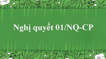 6 trọng tâm chỉ đạo điều hành của Nghị quyết 01/NQ-CP