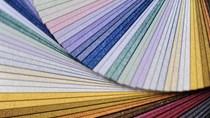 Giấy và các sản phẩm từ giấy xuất khẩu sang Đức năm 2019 tăng trưởng mạnh mẽ