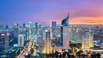 Kim ngạch xuất khẩu hàng hóa của Việt Nam sang Indonesia giảm nhẹ trong năm 2019