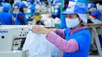 Nghị quyết của Chính Phủ về chế độ cấp giấy phép xuất khẩu đối với khẩu trang y tế