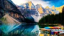 Kim ngạch XK của Việt Nam sang Canada tăng trưởng mạnh trong 2 tháng đầu năm 2020
