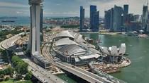 Việt Nam đẩy mạnh XK 1 số mặt hàng sang Singapore trong bối cảnh dịch nCoV phức tạp