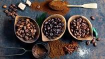 Giá cà phê có thể tăng trong năm 2020 bởi nguồn cung hạn chế và nhu cầu tiêu thụ lớn
