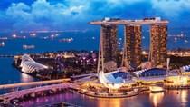 Trong 3 tháng đầu năm 2020, kim ngạch xuất khẩu hàng hóa sang Singapore sụt giảm