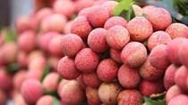 TT nông sản ngày 27/4: Nhiều sản phẩm rau củ, trái cây có mức giá tốt