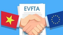 Bộ Công Thương hướng dẫn về chứng từ chứng nhận xuất xứ trong EVFTA