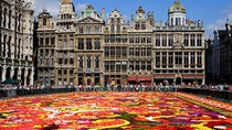 Xuất khẩu hàng hóa sang Bỉ trong 7 tháng đầu năm sụt giảm so với cùng kỳ