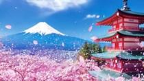 Hàng hóa nhập khẩu từ Nhật Bản có trị giá hơn 11 tỷ USD trong 7T/2020