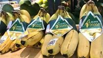 Sắp diễn ra Hội chợ ngành rau quả quốc tế tại Tây Ban Nha