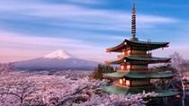 Kim ngạch nhập khẩu từ thị trường Nhật Bản đạt 12,78 tỷ USD tính đến tháng 8/2020
