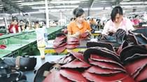 NK nguyên liệu dệt, may, da, giầy giảm tại hầu hết các TT trong 9 tháng đầu năm