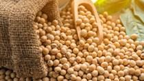 Giá các mặt hàng nông sản diễn biến trái chiều trong phiên hôm qua