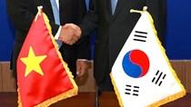 Nhiều mặt hàng nhập khẩu từ Hàn Quốc có kim ngạch sụt giảm trong 10 tháng/2020