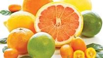 Vì sao giá trái cây nội địa Trung Quốc giảm trong khi giá sản phẩm NK lại tăng?