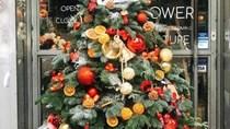 Chưa đến giáng sinh, cây thông ngoại đã gây sốt thị trường
