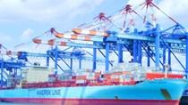 Xuất khẩu sắt thép các loại sang Brazil tăng trong 11 tháng đầu năm 2020