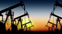 Giá dầu tuần đến ngày 11/12 và triển vọng thị trường năm 2021
