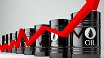 Vắc xin Covid-19 đang dần tác động tích cực lên thị trường dầu mỏ