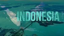 Kim ngạch nhập khẩu hàng hóa từ Indonesia 11 tháng đầu năm giảm nhẹ