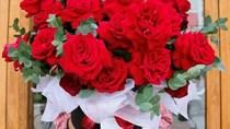 Cửa hiệu bán hoa, chocolate mở cửa xuyên Tết phục vụ Valentine