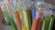 EU hạn chế nhập khẩu một số đồ nhựa dùng một lần