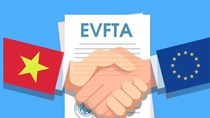 Khẳng định tầm quan trọng của EVFTA trong quan hệ hợp tác Việt Nam - EU