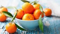 USDA: Sản lượng cam toàn cầu năm 2020/21 tăng sẽ đẩy lượng chế biến tăng