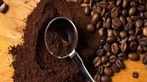 Giá cà phê trong nước ngày 28/11/2017
