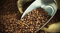 Thị trường cà phê, ca cao ngày 16/03/2017