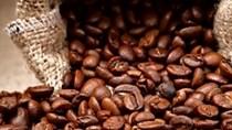 Thị trường đường, cà phê, ca cao thế giới ngày 03/8/2017