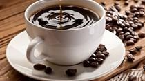 Giá cà phê trong nước ngày 05/12/2017