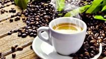Giá cà phê trong nước ngày 01/12/2017