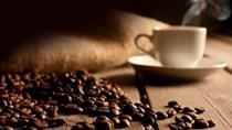 Thị trường cà phê, ca cao ngày 01/6/2017