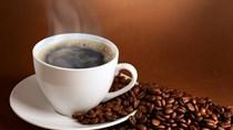 Giá cà phê trong nước ngày 30/1: Giảm nhẹ 100 đồng/kg