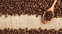 TT cà phê ngày 12/4: Giảm thêm 100 đồng/kg