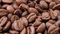 Giá đường thô ngày 11/10 sụt giảm từ mức cao 7 tháng; cà phê, ca cao cũng giảm giá