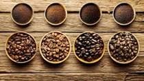 Giá cà phê ngày 02/11 bật tăng trở lại 700 đồng/kg