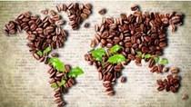 Cà phê châu Á: Giao dịch sôi động tại Indonesia, XK của Việt Nam tháng 4 sụt giảm