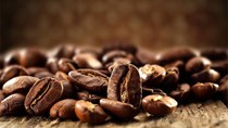 TT cà phê ngày 26/6: Tiếp nối đà tăng, Đắk Lăk chạm mốc 34.000 đồng/kg