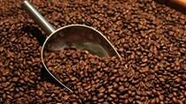 TT cà phê ngày 18/02: Giá đồng loạt tăng 200 đồng/kg tại các vùng Tây Nguyên