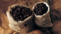 TT cà phê ngày 26/01: Giá tại các vùng Tây Nguyên giảm thêm 100 đồng/kg