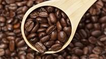 TT cà phê tuần 2 (11/01 – 16/01): Giá trong nước và thế giới đồng loạt tăng
