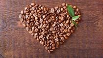 Marex dự báo thâm hụt cà phê toàn cầu vụ 2021/22 ở mức 10,7 triệu bao