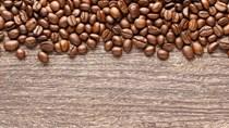 TT cà phê ngày 17/3: Giá hồi phục 500 đồng khắp các vùng nguyên liệu