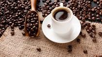 Giá cà phê hôm nay 21/9 giữ vững mức 39.900 – 40.800 đồng/kg
