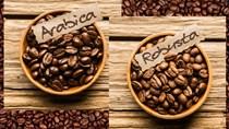 Dự báo sản lượng cà phê của Brazil giảm khiến thâm hụt nguồn cung cà phê toàn cầu