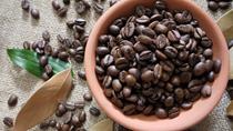 TT cà phê tuần 11 (15/3 – 20/3): Giá sụt giảm cả trong nước và thế giới