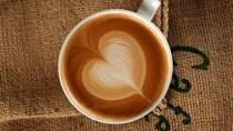 TT cà phê ngày 17/02: Giá đứng vững sau mức tăng cuối tuần